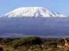 kilimanjaro_5101