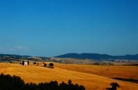 tuscany-86800_640