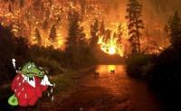 FONTE: http://pixdaus.com/incendio-forestal-incendios/items/view/37116/