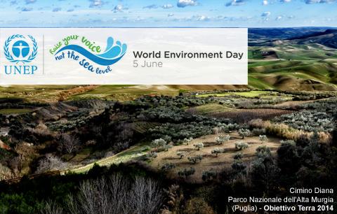Giornata dell'ambiente 2014_Cimino Diana