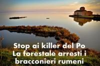 delta del po pesca illegale